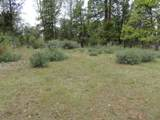 Lot 58 Shoshoni Loop - Photo 3