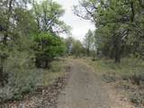 Lot 42 Shoshoni Loop - Photo 1