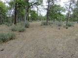 Lot 42 Shoshoni Loop - Photo 2