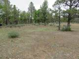 Lot 42 Shoshoni Loop - Photo 3