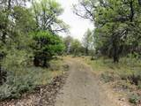 Lot 42 Shoshoni Loop - Photo 4