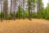 11593 Emerald Woods Ln - Photo 52