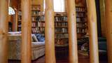 31352 Whispering Meadow Ct - Photo 44