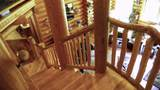 31352 Whispering Meadow Ct - Photo 45