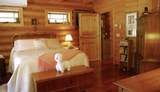 31352 Whispering Meadow Ct - Photo 49