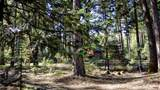 31352 Whispering Meadow Ct - Photo 8