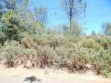 Tierra Oaks - Photo 4