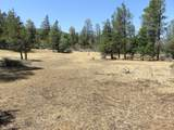 Lot 13 Cassel Fall River Rd. - Photo 1