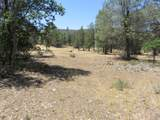 Lot 13 Cassel Fall River Rd. - Photo 3