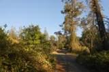 13599 Oak Run Rd - Photo 2