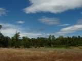 Old Oregon Trail - Photo 23