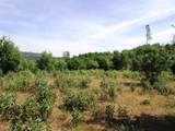 9 acres Jones Valley Trail - Photo 11