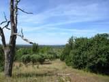 9 acres Jones Valley Trail - Photo 12
