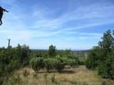 9 acres Jones Valley Trail - Photo 13