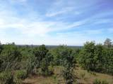 9 acres Jones Valley Trail - Photo 15