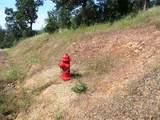 9 acres Jones Valley Trail - Photo 5
