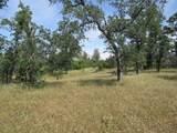 9 acres Jones Valley Trail - Photo 6
