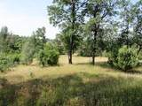 9 acres Jones Valley Trail - Photo 7