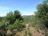 9 acres Jones Valley Trail - Photo 8