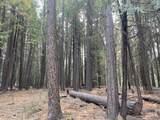 Lot 51 Battle Creek Dr. - Photo 4