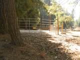 35440 Shenandoah Dr - Photo 74