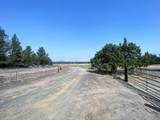 22 Acres Off Of Big Springs Rd - Photo 14