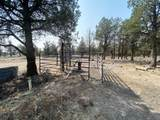 22 Acres Off Of Big Springs Rd - Photo 15