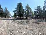 22 Acres Off Of Big Springs Rd - Photo 20