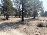 22 Acres Off Of Big Springs Rd - Photo 21