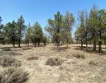 22 Acres Off Of Big Springs Rd - Photo 22