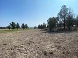 22 Acres Off Of Big Springs Rd - Photo 6