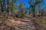 7161 Rector Creek Rd - Photo 42
