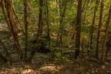 .71 Acres Off Trinity Meadows - Photo 59