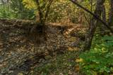 .71 Acres Off Trinity Meadows - Photo 62