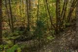 .71 Acres Off Trinity Meadows - Photo 63