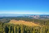 7268 Shasta Forest Dr - Photo 34