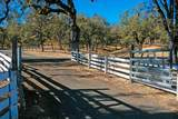 14021 Oak Run Rd - Photo 7