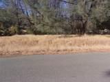 Meadow Vista Way - Photo 1