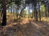 511 Bear Creek Trl - Photo 1