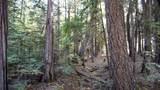 Emigrant Trail - Photo 1