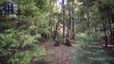 Emigrant Trail - Photo 7