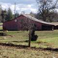 6454 Churn Creek Rd - Photo 6
