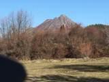 Spruce - Photo 7