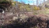 13509 Trinity Mountain Rd - Photo 16