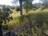 Jones Valley Trail - Photo 11