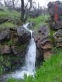 Jones Valley Trail - Photo 13