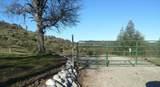 Jones Valley Trail - Photo 14