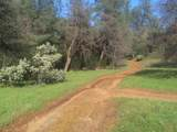 Jones Valley Trail - Photo 16