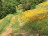 Jones Valley Trail - Photo 2