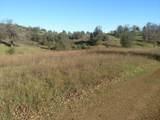 Jones Valley Trail - Photo 26